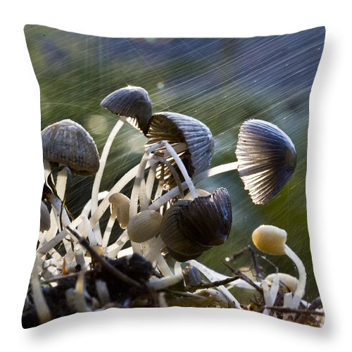 Mushrooms Rain Showers Umbrellas Nature Fungi Throw Pillow featuring the photograph Nature by Sheila Smart Fine Art Photography
