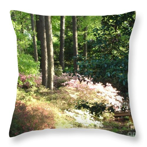 Photography Throw Pillow featuring the photograph Nature by Shelley Jones