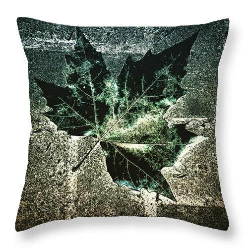 Beautiful Throw Pillow featuring the photograph #nature #tagsforlikes #beautiful by J Love