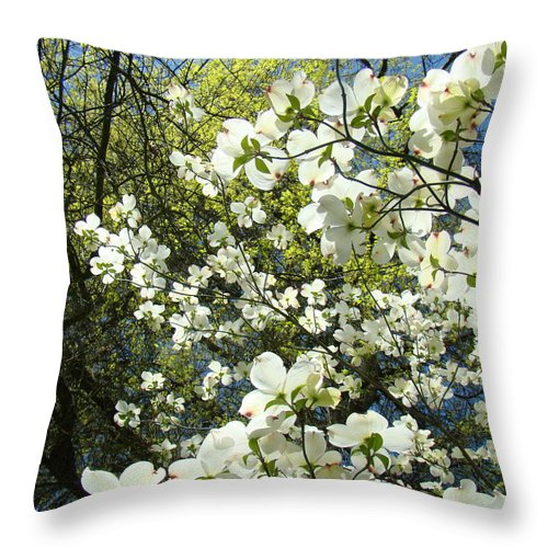Dogwood Throw Pillow featuring the photograph Nature Tree Landscape Art Prints White Dogwood Flowers by Baslee Troutman
