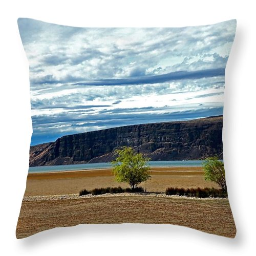 Blue Throw Pillow featuring the photograph Natures Beauty by Cherie Duran