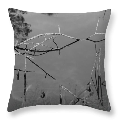 Black And White Throw Pillow featuring the photograph Natures Bridge by Rob Hans