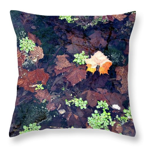 Trees Throw Pillow featuring the photograph Natures Canvas by Carol Sweetwood