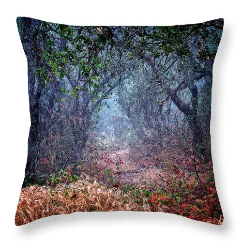 Nature Throw Pillow featuring the photograph Nature's Chaos, Arroyo Grande, California by Zayne Diamond Photographic