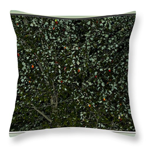 Fall Throw Pillow featuring the photograph Nature's Christmas Lights by Gary Adkins