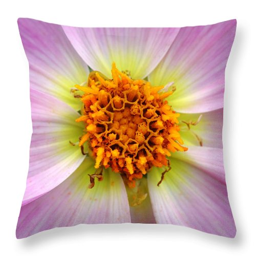 Flower Throw Pillow featuring the photograph Nature's Colors by Pierre Leclerc Photography