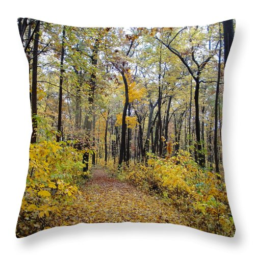 Nature Throw Pillow featuring the photograph Nature's Expression -1 by Leonard Holland