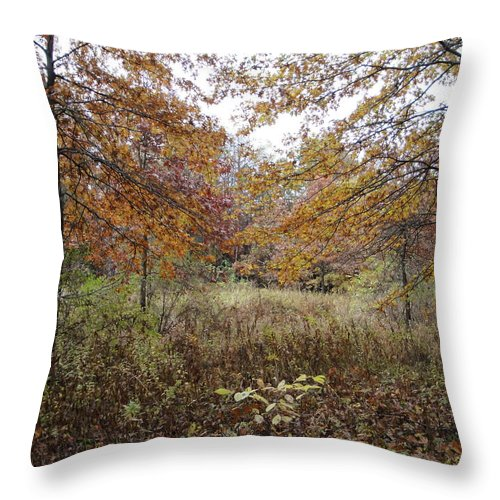 Autumn Landscape Throw Pillow featuring the photograph Nature's Expression-10 by Leonard Holland