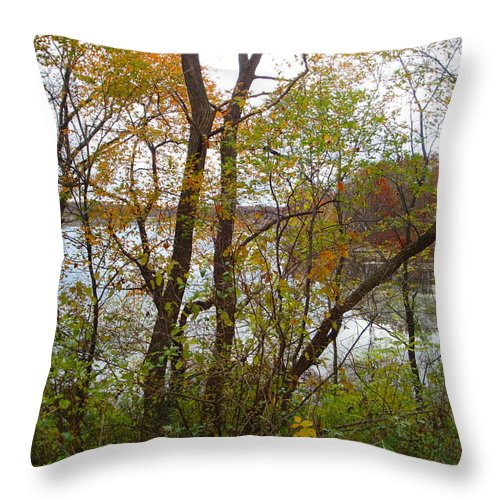 Autumn Landscape Throw Pillow featuring the photograph Nature's Expression-11 by Leonard Holland