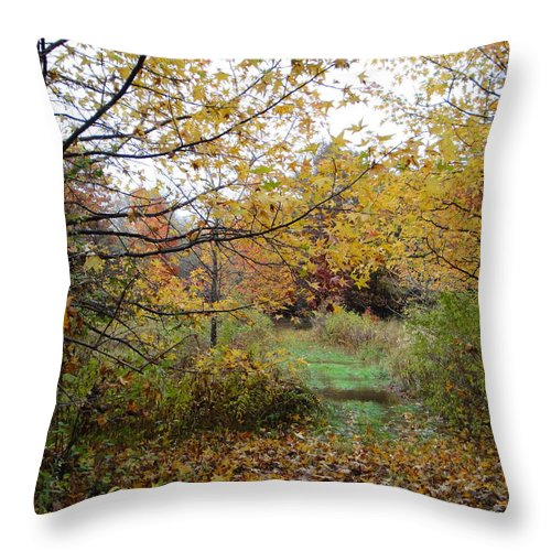 Autumn Landscape Throw Pillow featuring the photograph Nature's Expression-12 by Leonard Holland