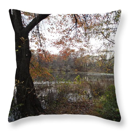 Autumn Landscape Throw Pillow featuring the photograph Nature's Expression-13 by Leonard Holland