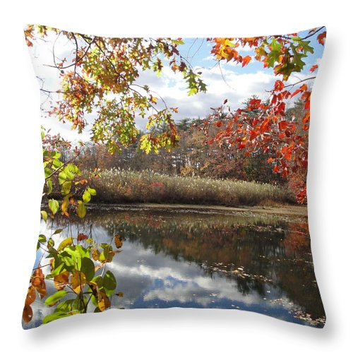 Autumn Landscape Throw Pillow featuring the photograph Nature's Expression-18 by Leonard Holland