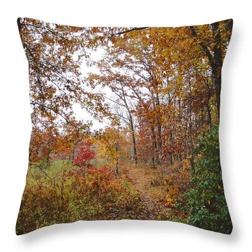 Autumn Landscape Throw Pillow featuring the photograph Nature's Expression-2 by Leonard Holland