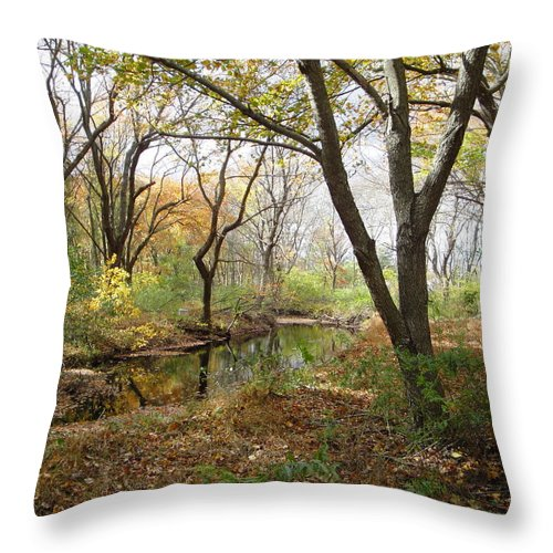 Landscape Throw Pillow featuring the photograph Nature's Expression 21 by Leonard Holland