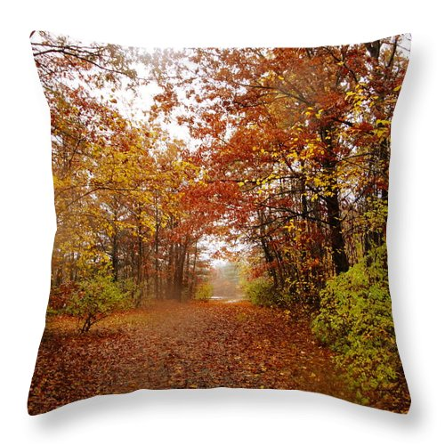 Autumn Landscape Throw Pillow featuring the photograph Nature's Expression-8 by Leonard Holland