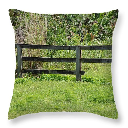 Fence Throw Pillow featuring the photograph Natures Fence by Rob Hans