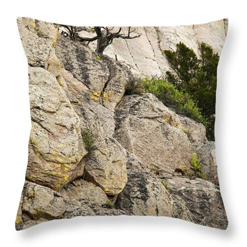 Cliff Throw Pillow featuring the photograph Natures Selection by Chad Davis