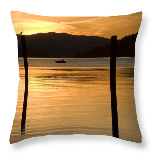 Bird Throw Pillow featuring the photograph Natures Spotlight by Idaho Scenic Images Linda Lantzy