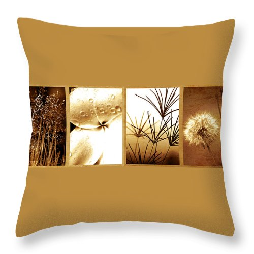 Floral Throw Pillow featuring the photograph Nature's Window by Holly Kempe
