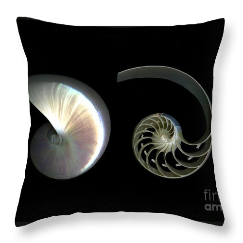 Nautilus Throw Pillow featuring the photograph Nautilus Deconstructed by Christian Slanec