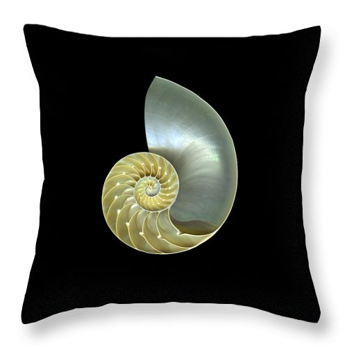 Slanec Throw Pillow featuring the photograph Nautilus Nr.1 by Christian Slanec