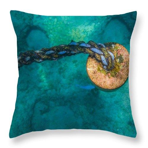Ocean Throw Pillow featuring the photograph Nautique by JJ Tondo