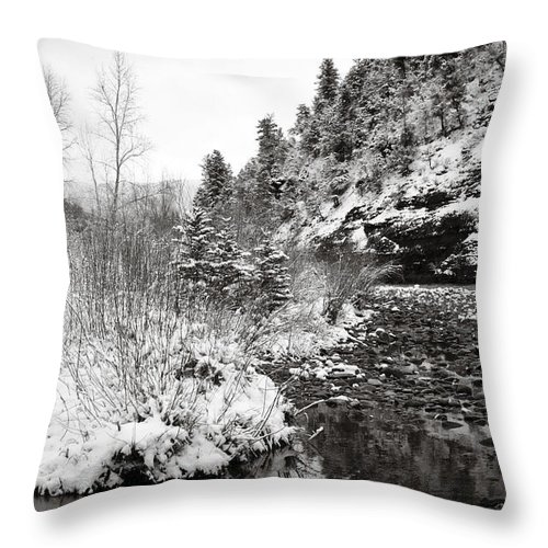 Winter Throw Pillow featuring the photograph Near Telluride Colorado by Marilyn Hunt