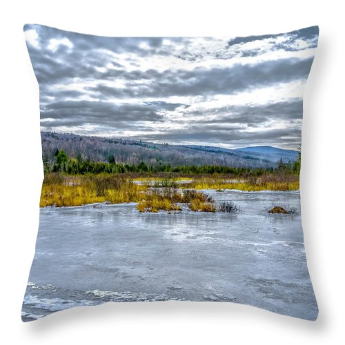 Landscape Throw Pillow featuring the photograph Near The End by Ron Christie