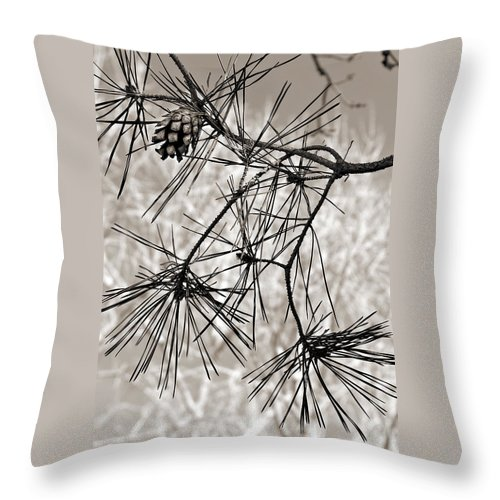 Tree Throw Pillow featuring the photograph Needles Everywhere by Marilyn Hunt