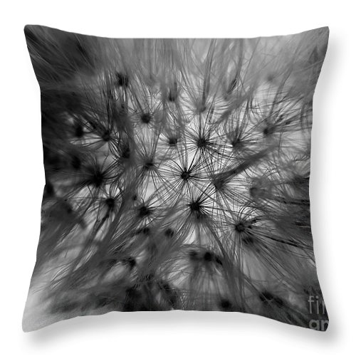 Macro Throw Pillow featuring the photograph Negative Dandelion by Robert Coon Jr