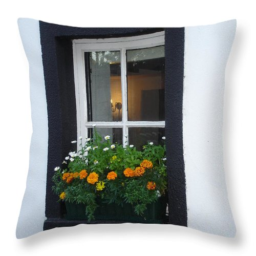 Window Throw Pillow featuring the photograph Neighbor by Kelly Mezzapelle