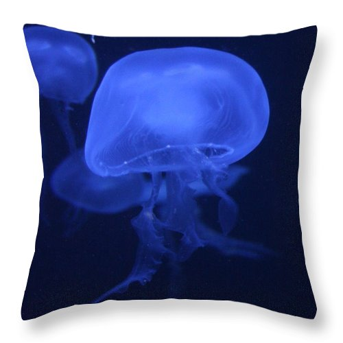 Animal Throw Pillow featuring the photograph Neon Jelly 1 by David Dunham