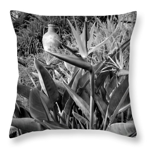 Big-sur Throw Pillow featuring the photograph Nepenthe Bird Of Paradise B And W by Joyce Dickens