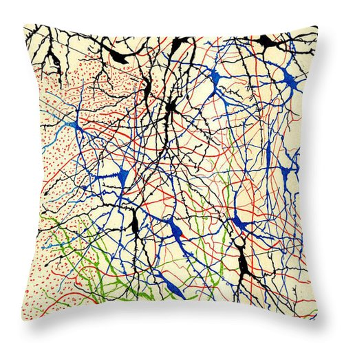 History Throw Pillow featuring the photograph Nerve Cells Santiago Ramon Y Cajal by Science Source