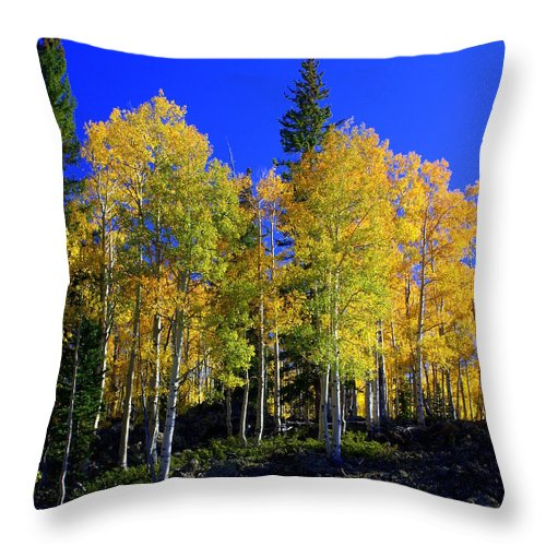 Fall Colors Throw Pillow featuring the photograph Nevada Fall by Marty Koch