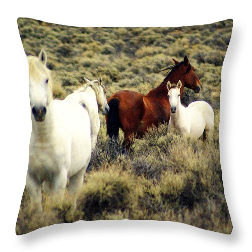 Horses Throw Pillow featuring the photograph Nevada Wild Horses by Marty Koch