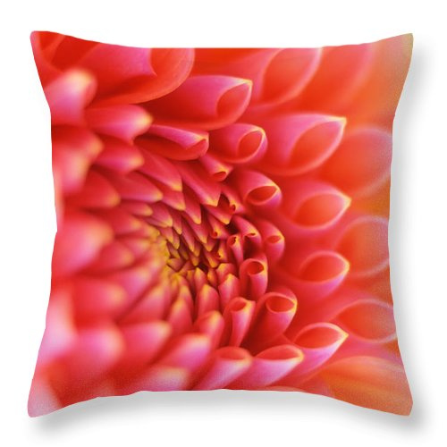 Flowers Throw Pillow featuring the photograph New Beginnings by Kathy Yates