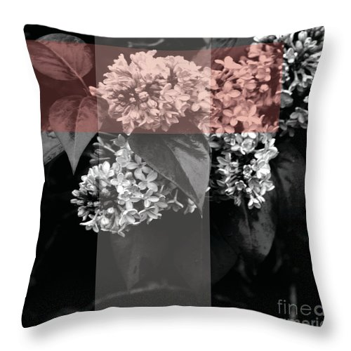 Jamie Lynn Gabrich Throw Pillow featuring the photograph New Being by Jamie Lynn