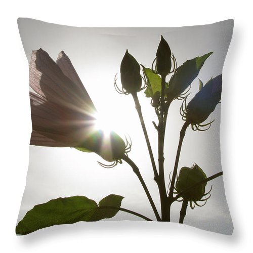 Nature Throw Pillow featuring the photograph New Day by Peg Urban