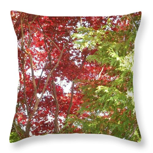Autumn New England Leaves Throw Pillow featuring the photograph New England Autumn Globe by Kristine Nora