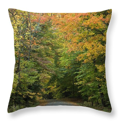 Foliage Throw Pillow featuring the photograph New England Road by Jessica Wakefield