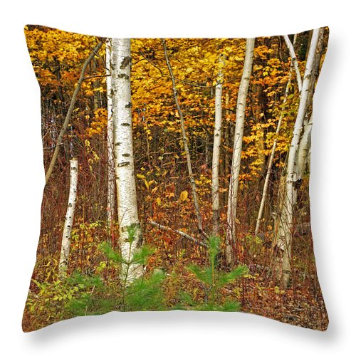 Fine Art Throw Pillow featuring the photograph New Growth Old Leaves by Phill Doherty
