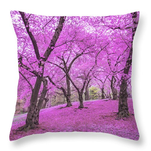 Springtime Throw Pillow featuring the photograph New York City Springtime by Vivienne Gucwa