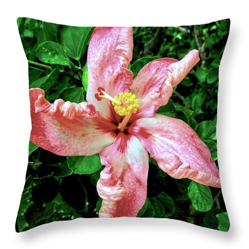 Hibiscus Throw Pillow featuring the photograph Newly Opened Coral Hibiscus by Kirsten Giving