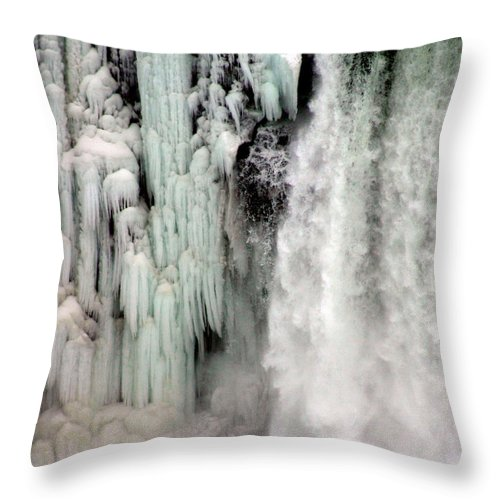 Landscape Throw Pillow featuring the photograph Niagara Falls 5 by Anthony Jones