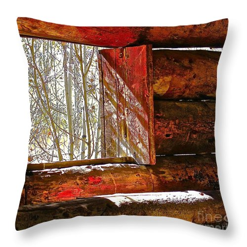 Aspen Throw Pillow featuring the photograph Nice View by Elisabeth Derichs