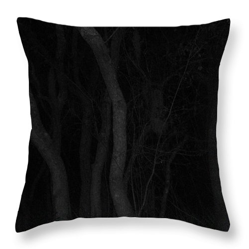Oak Tree Throw Pillow featuring the photograph Night Time Tree Dance by WaLdEmAr BoRrErO