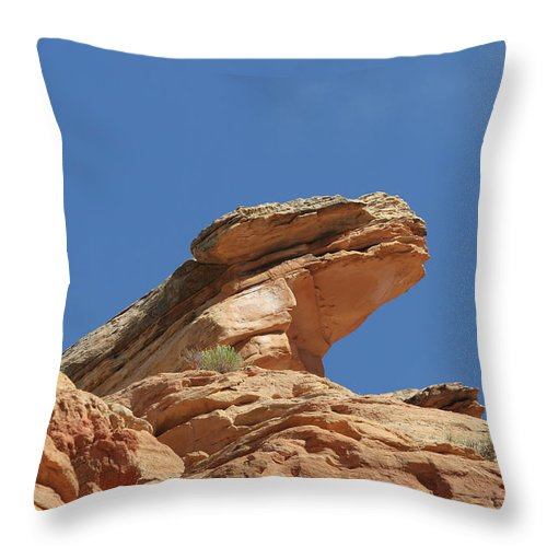 Landscape Art Throw Pillow featuring the photograph Nine Mile Canyon Utah by Christine Till
