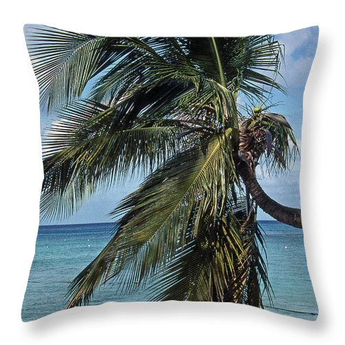 Scenic Tours Throw Pillow featuring the photograph Nirvana by Skip Willits