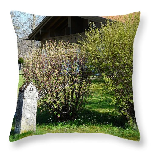 Door Throw Pillow featuring the photograph No. 9 by Valerie Ornstein